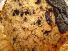 クッキークリーム断面