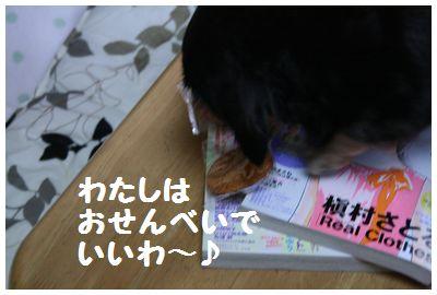 IMG_1874夢おせんべい