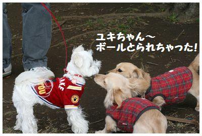 IMG_5833ユキちゃん1