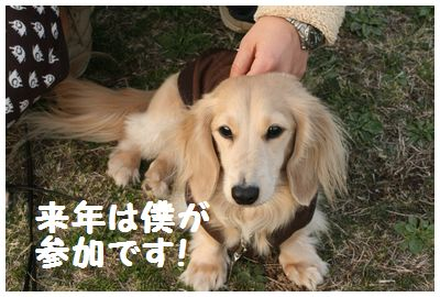 IMG_6291僕2