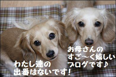 IMG_9149_1すご~く嬉しいブログ