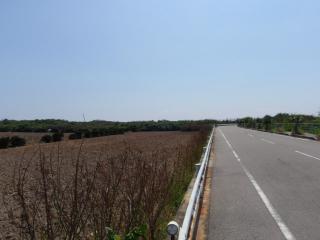 20070725_外周道路(2)