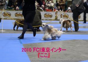 2010 『ここ』_tokyointer_02