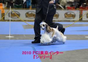 2010 『シェリー』_tokyointer_01