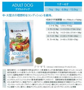 adult-dog-135.jpg