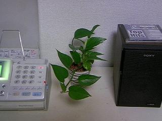 s-TS3C0028.jpg