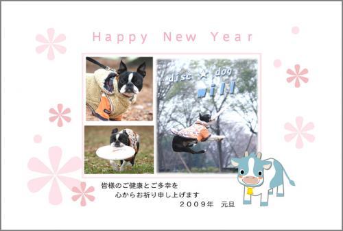 1-1_20090101235926.jpg