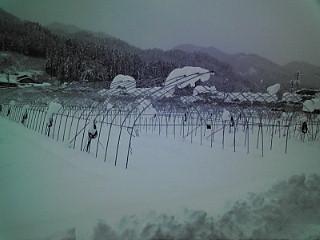 2010年 2月 雪深し・・・・