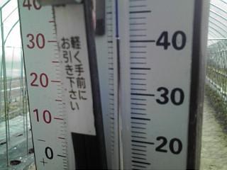 暑い暑い五月なのに暑い