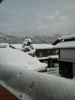 2011元旦雪