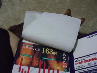 P9021531A.jpg