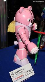 AJP HOBBY SHOW 2011 0315