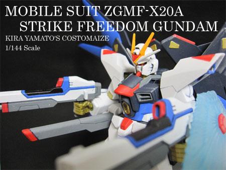ZGMF-X20A-1