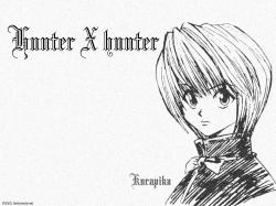 {FC}-Hunter20x20Hunter20-20000-(1024x768).jpg