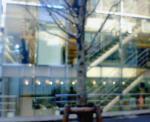 NEC_0169.jpg