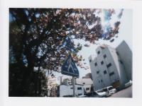 110・神戸、名古屋_0005