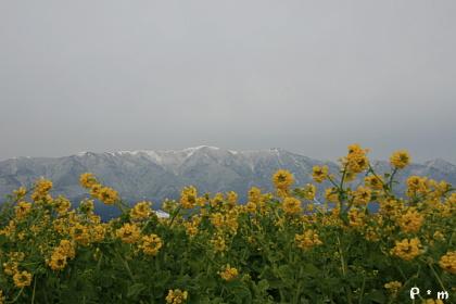 200822a.jpg