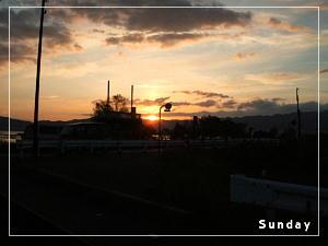sun9241.jpg