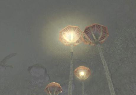 20060213124043.jpg