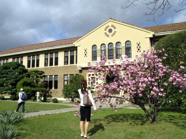 神戸女学院の八重桜