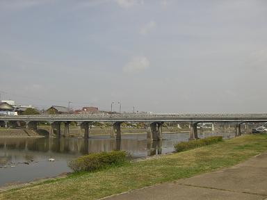 hanami13.jpg