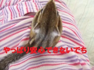 007_convert_20090903131449.jpg