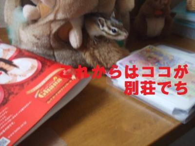 008_convert_20090629131509.jpg
