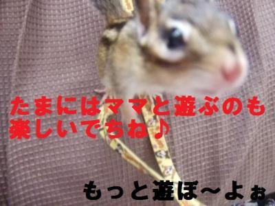 010_convert_20090723205235.jpg