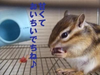 014_convert_20090626203419.jpg