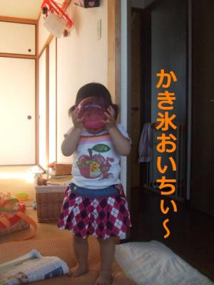 016_convert_20090612163520.jpg