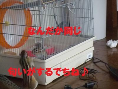 016_convert_20090822073630.jpg