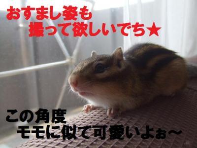 017_convert_20090901173952.jpg