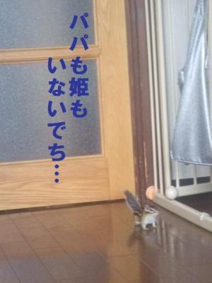 020_convert_20090622162018.jpg