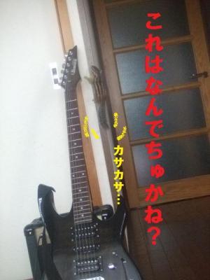 022_convert_20090622162057.jpg
