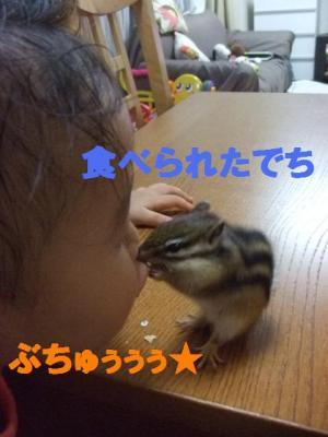 027_convert_20090801082517.jpg