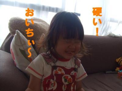 028_convert_20090712065928.jpg