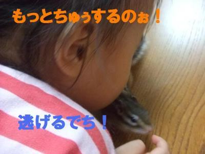 030_convert_20090801082706.jpg