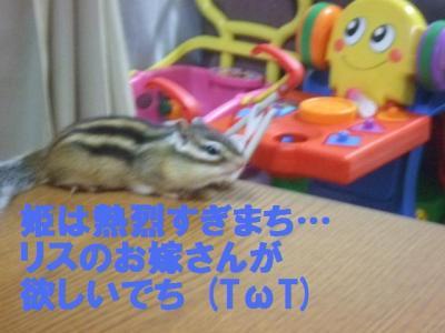 031_convert_20090801082731.jpg
