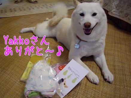 Yakkoさんからの誕生日プレゼント♪