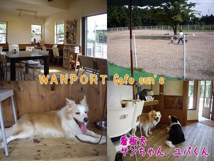 WANPORT Cafe sun's