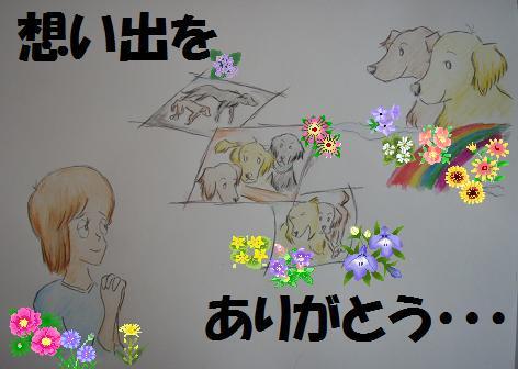 KURO 001aaflower