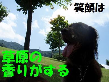 コピー ~ 04JUL08 266