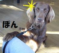 コピー ~ コピー ~ 07,08,09FEB07 069a