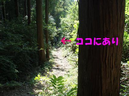 13SEP09 JINBA 026