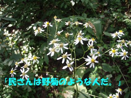 13SEP09 JINBA 049