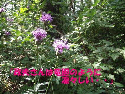 13SEP09 JINBA 052