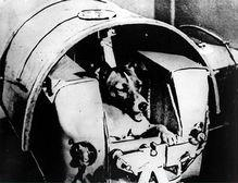 sputnik2_prep.jpg