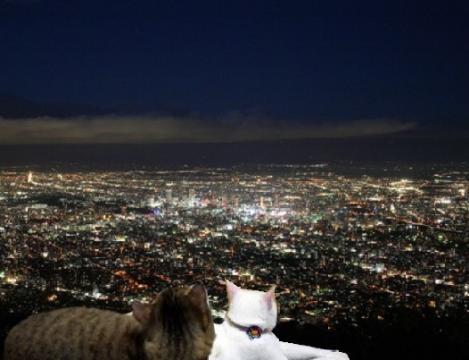 喪岩山夜景