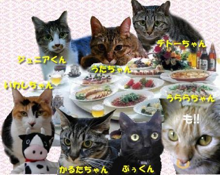 table50099.jpg
