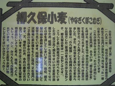 2010.05.08 003